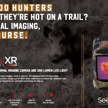Seek Reveal XR Fast Frame